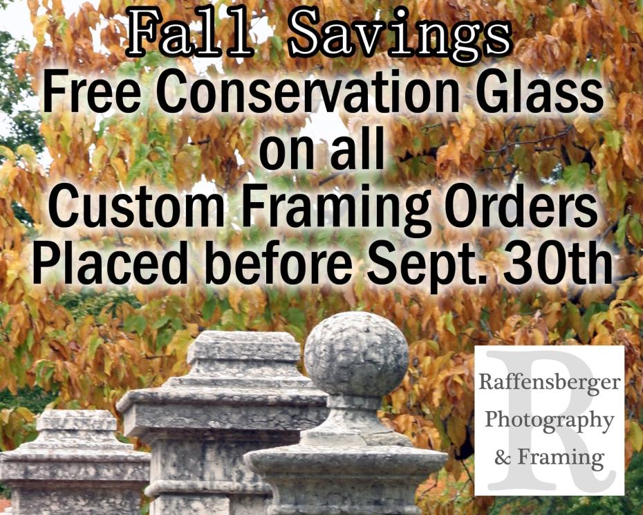 Free glass fall